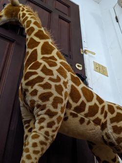 Huge Giraffe Plushie for Sale in Lodi,  CA