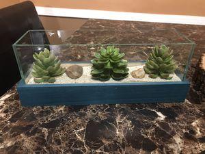 Decorative succulents for Sale in Marietta, GA