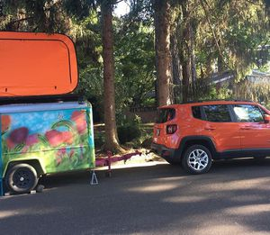 Lovely fun!!! for Sale in Tigard, OR
