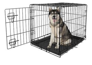 """Vibrant Life Single-Door Folding Dog Crate with Divider, 42"""" for Sale in Hayward, CA"""