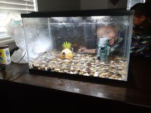 Fish tank 10 gallon for Sale in Houston, TX