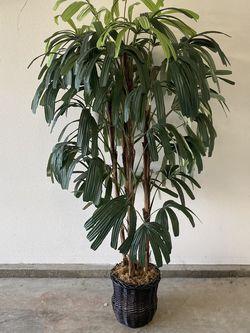 Fake Plant for Sale in Glendora,  CA