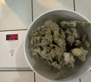 Dry rocks Salt water for Sale in Margate, FL