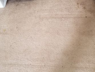 Free Free 540 Sqf Carpet Good Condition for Sale in Houston,  TX