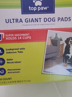 Dog Potty Pad for Sale in Fresno,  CA