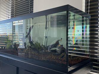 75 Gallon Aquarium for Sale in Charlotte,  NC