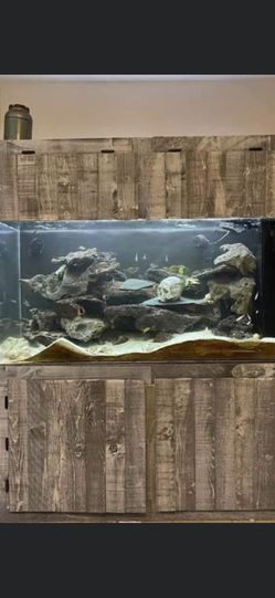 200 gallons Acrylic Fish Tank for Sale in Phoenix,  AZ