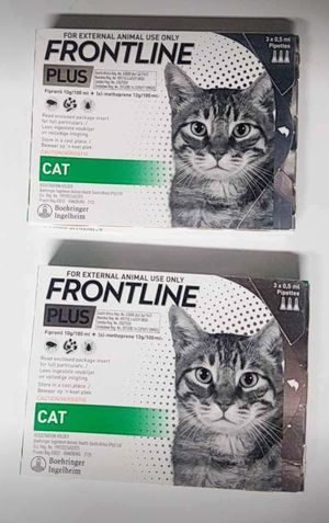 Frontline Plus for Cats- brand new for Sale in Wellsville, PA