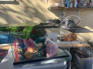 Fish tank for Sale in Redwood City, CA