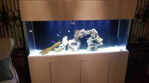 Fish Aquarium for Sale in Phillips Ranch, CA