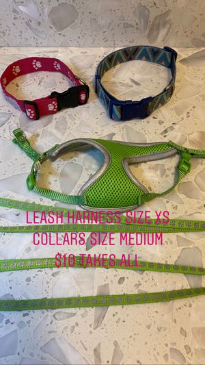 Pet collars for Sale in Lake Stevens, WA