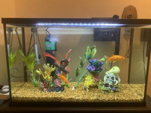 Aquarium 29 gallon with all accessories for Sale in Malden, MA