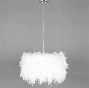CEILING PENDANT & FEATHER CHANDELIER SHADE W/LED BULB for Sale in Providence, RI