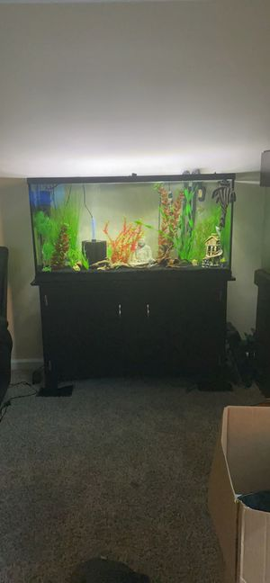55 gallon fish tank with very nice filter & stand for Sale in Columbus, OH