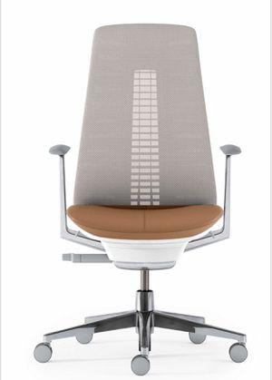 Fern Chair by Haworth for Sale in Boston, MA