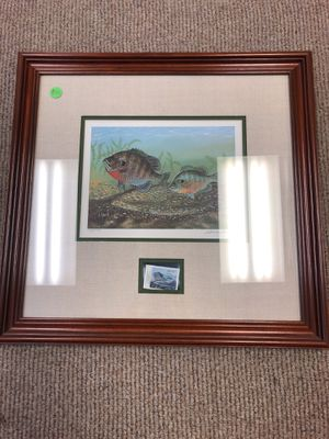 North Carolina Resident Sportman's Fishing Stamp Framed picture for Sale in High Point, NC