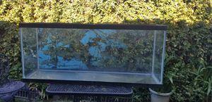 55 Gallon *Large Aquarium* Length 48.75 IN* for Sale in Visalia, CA