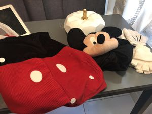 Mickey & Minnie Halloween Costume for Sale in Downers Grove, IL