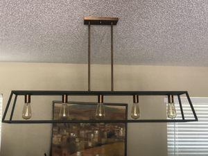 Hinkley Linear Light Fixture for Sale in Lutz, FL