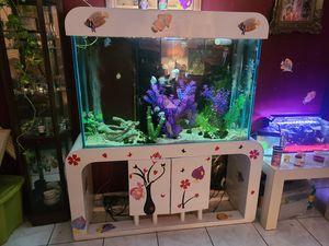 125 gallon fish tank custom built for Sale in Tampa, FL
