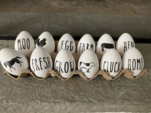 Farmhouse Eggs for Sale in Canterbury, CT