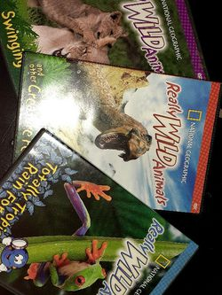 National Geographic Really wild Animals DVDs (3) for Sale in Orlando,  FL