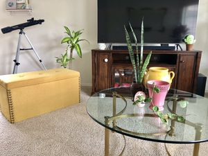 Mother in law's tongue (snake plant) in ceramic brown flower vase and inside cactus soil $12 for Sale in San Antonio, TX