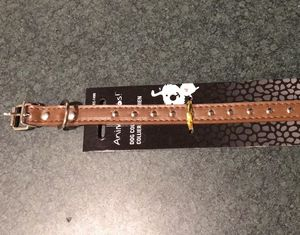 Dog collar (for small dogs) for Sale in Orem, UT