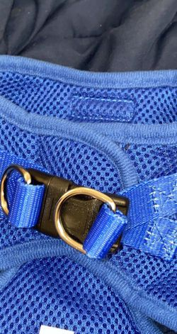 Dog Harnesses for Sale in Hayward,  CA