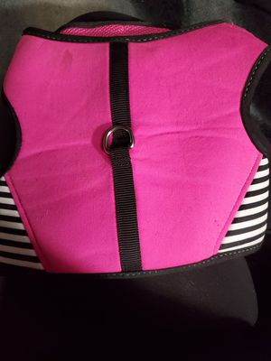 Small dog harness for Sale in Phoenix, AZ