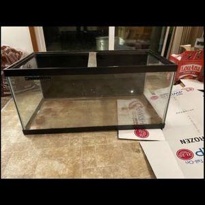 50 Gallon Fish Tank / Terrarium for Sale in Lynnwood, WA