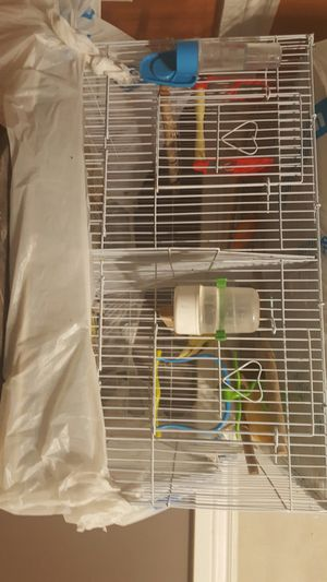 Bird Cage u can make it 2 cage and u can make it one cage brand new for $30 for Sale in Chicago, IL