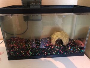 Fish tank for Sale in Providence, RI
