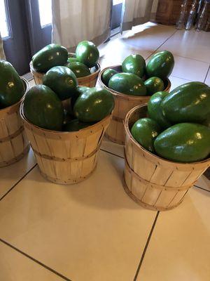 Avocados for Sale in Miami, FL