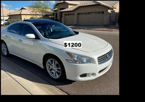 $1200 MAxima SV for Sale in Lakewood, CO