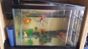 20 gal Fish Tank for Sale in National City, CA