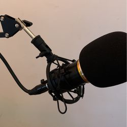Bm-800 Studio Microphone for Sale in Amherst,  VA