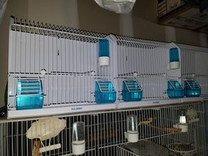 All Metal Bird Training Cage - White Enamel Finish for Sale in PA, US