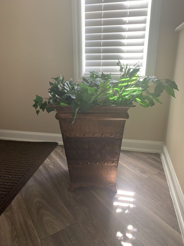 Vase...greenery not included