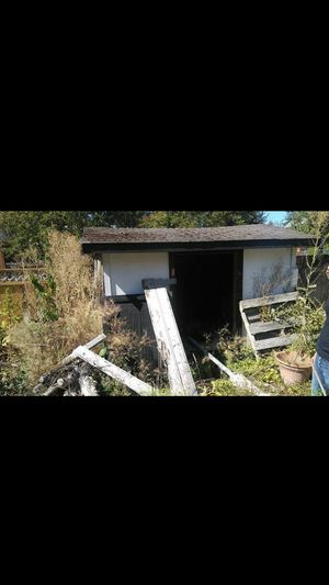 Shed 10x8x6 for Sale in Seattle, WA