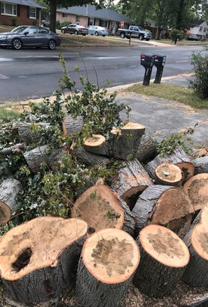 FREE Fire wood for Sale in Richmond, VA