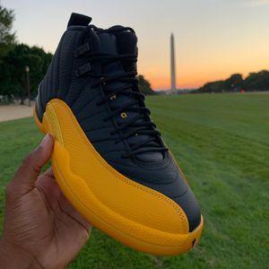 Jordan 12 Black University Gold Size 8 DS/Brand New for Sale in Washington, DC