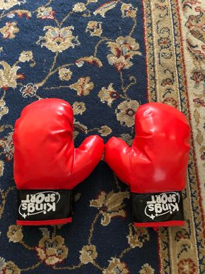 Punching Bag With Gloves for Sale in Leesburg, VA