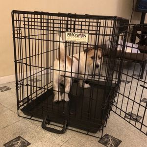 Dog Cage for Sale in Queens, NY