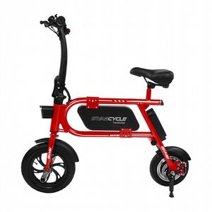 Swag Cycle Electric Bike for Sale in Lithia, FL