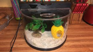 Small fish tank for Sale in Mesquite, TX