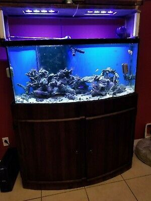 72 Gal Aquarium for Sale in Fort Washington, MD