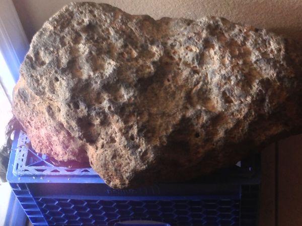Meteorite matrixed pallasite