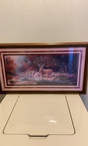 Deer pictures for Sale in Albuquerque, NM