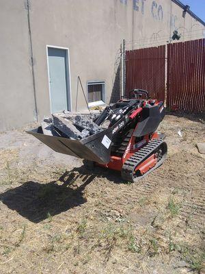 HandyMan/Yard Demo/ dump runs/small tractor for Sale in Rancho Cordova, CA
